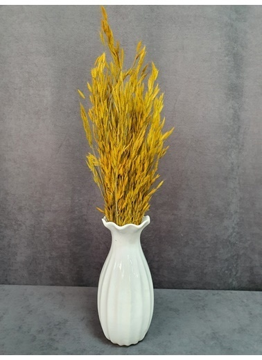 Kuru Çiçek Deposu Kuru Çiçek Yulaf Otu Demeti 50 Cm Yeşil   Sarı